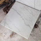 Grey Vein Carrara